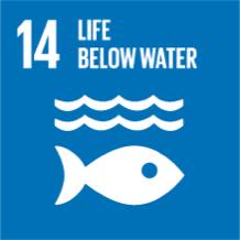 Sustainable Role Image